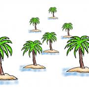 Wissensinseln, kleine Palmeninseln